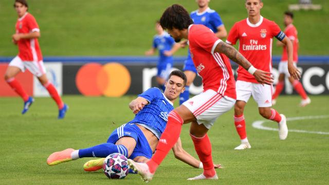 Futebol Dínamo Zagreb Benfica UEFA Youth League