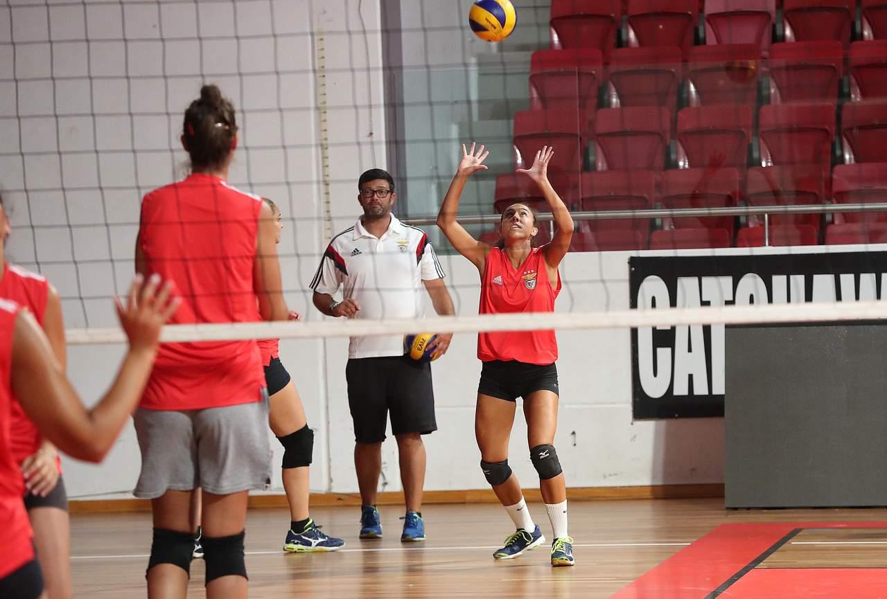 Voleibol feminino