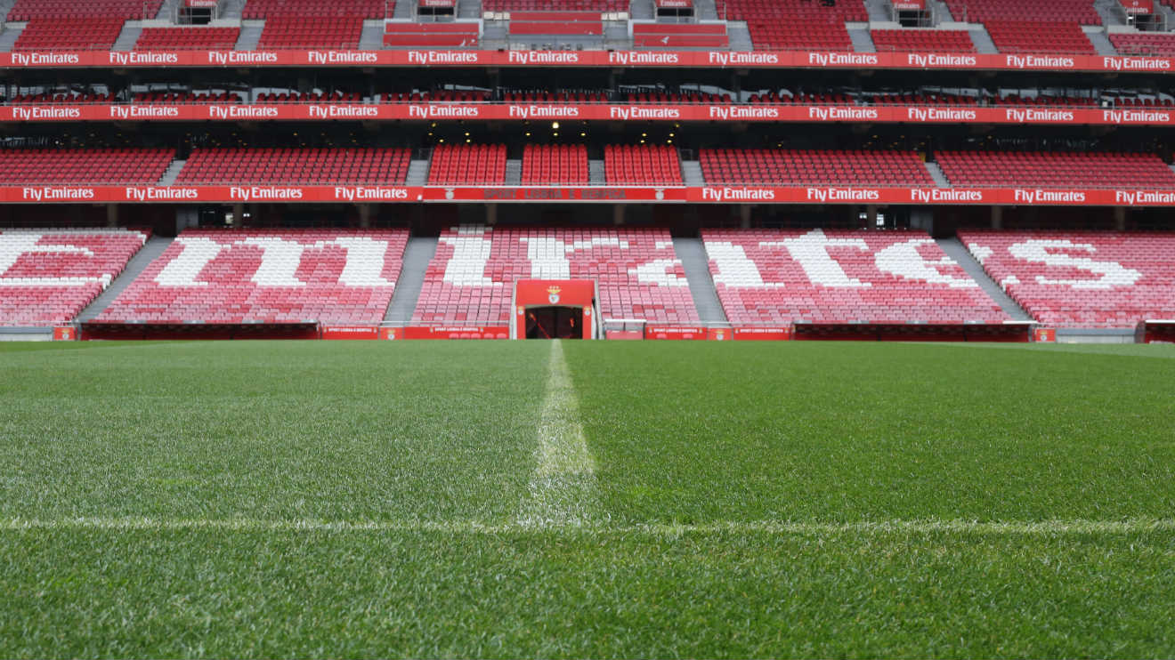 The splendor of the grass sl benfica for Piso 0 estadio da luz