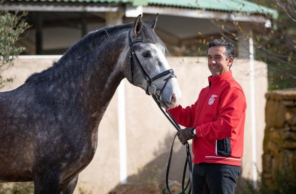 Dressage: Daniel Pinto com o cavalo Mico, DP Dressage