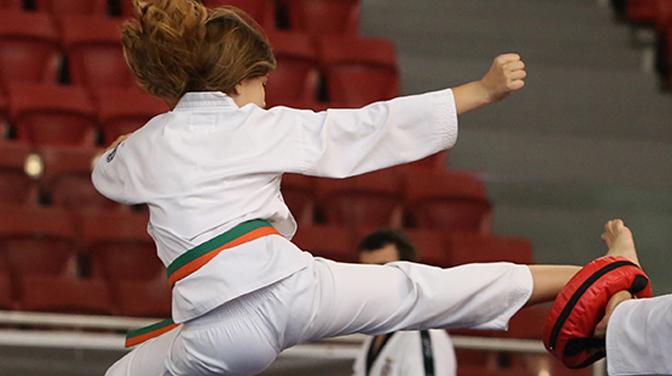 Martial Arts: Taekwondo